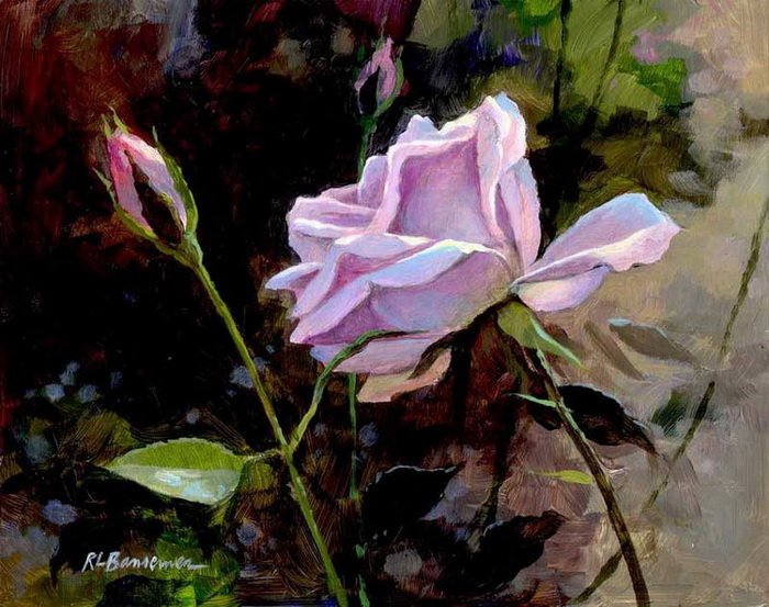 Afternoon-Roses