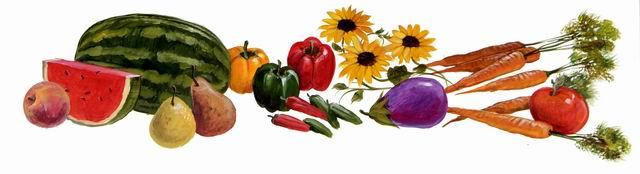 Vegtables 1