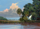 Florida Wilderness Paintings